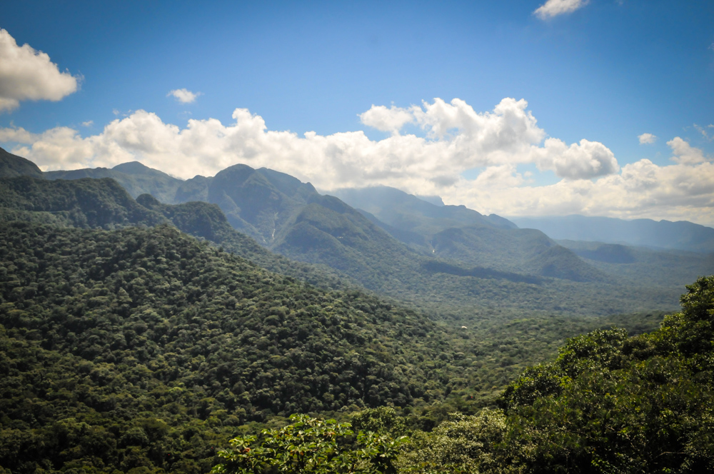 Brazil - Serra Verde-12