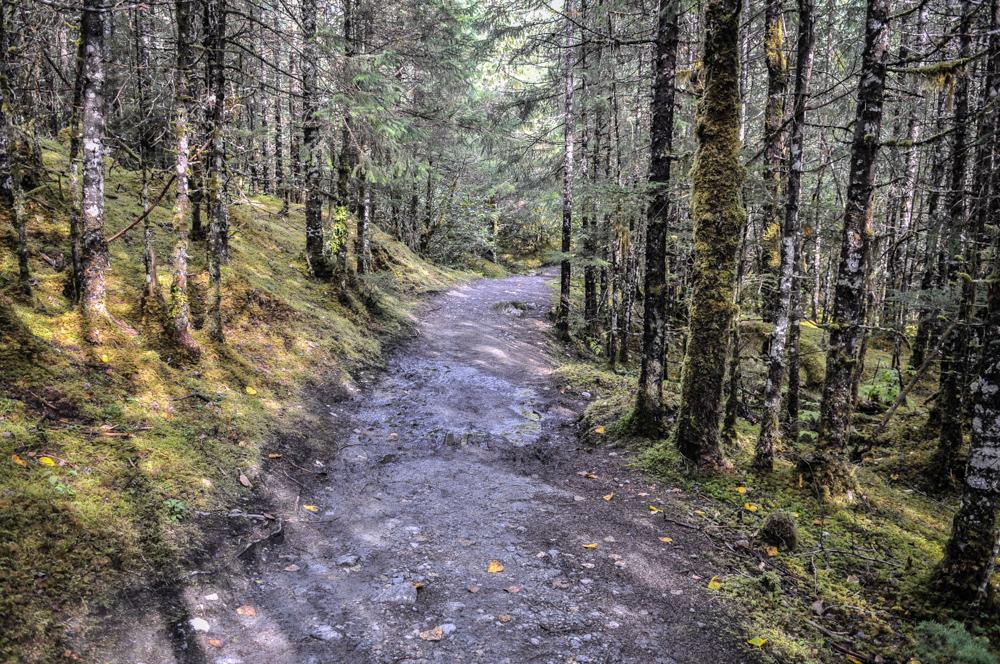 Juneau and Mendenhall Glacier - Alaska